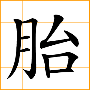 Tire Number Meanings >> Chinese symbol: 胎, fetus, embryo, tire of wheel