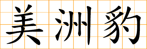 Chinese symbol: 豹, leopard, panther