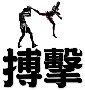 kick-boxing, mixed martial arts